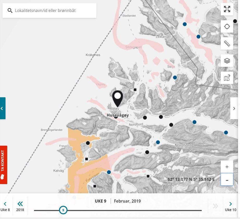 Tre oppdrettsselskap har gått sammen om ny lokalitet i Nordfjord. Den nye lokaliteten Husevågøy er avgjørende for at de skal få satt ut fisk i 2019, etter ILA-problemer i Austevoll. Skjermdump fra Barentswatch.