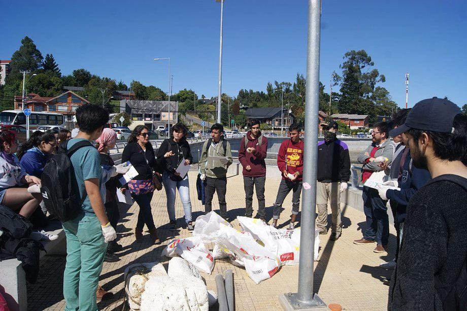 Los estudiantes de Ingeniería Ambiental de la UACh limpiaron la playa de Pelluco. Foto: UACh.