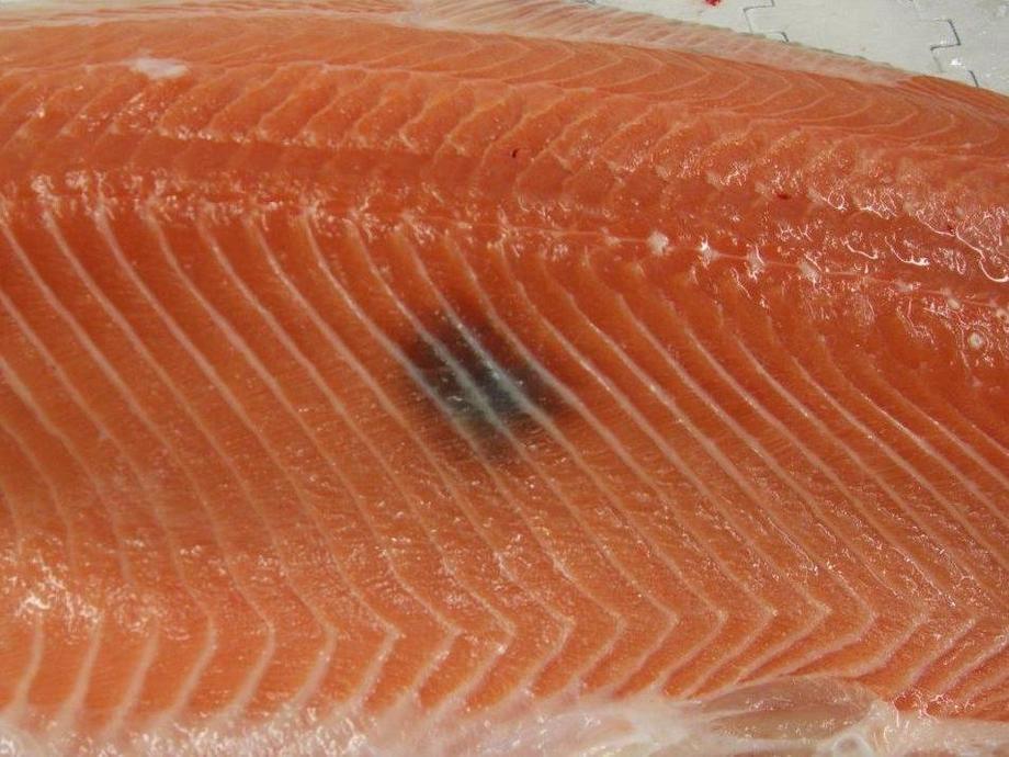 Det er deilig å være norsk i Danmark, med mindre du er produksjonsfisk. Melaninfeil som dette gjør at fisken regnes som produksjonsfisk. Foto: Nofima