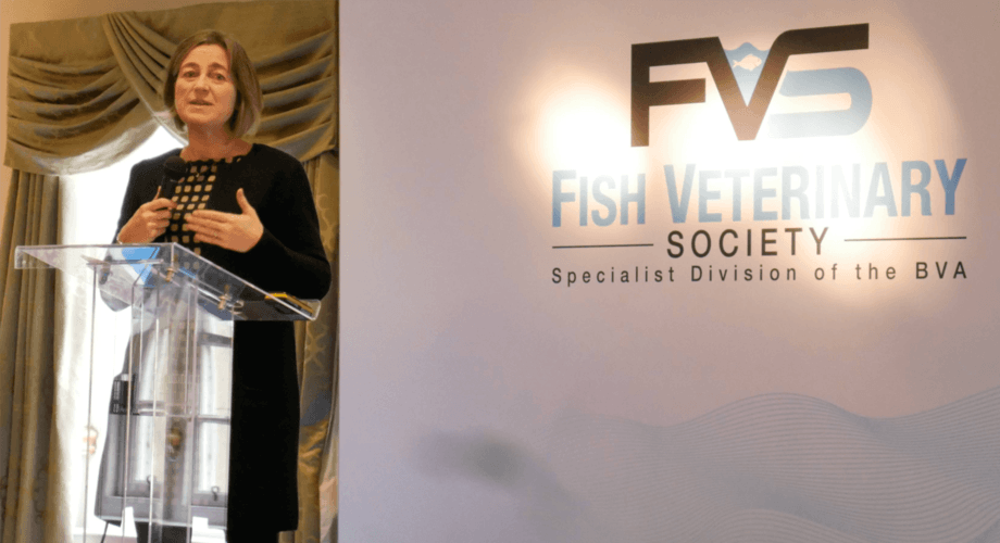 SSPO chief executive Julie Hesketh-Laird lists salmon farming's achievements to the Fish Vet Society conference. Photo: FFE.
