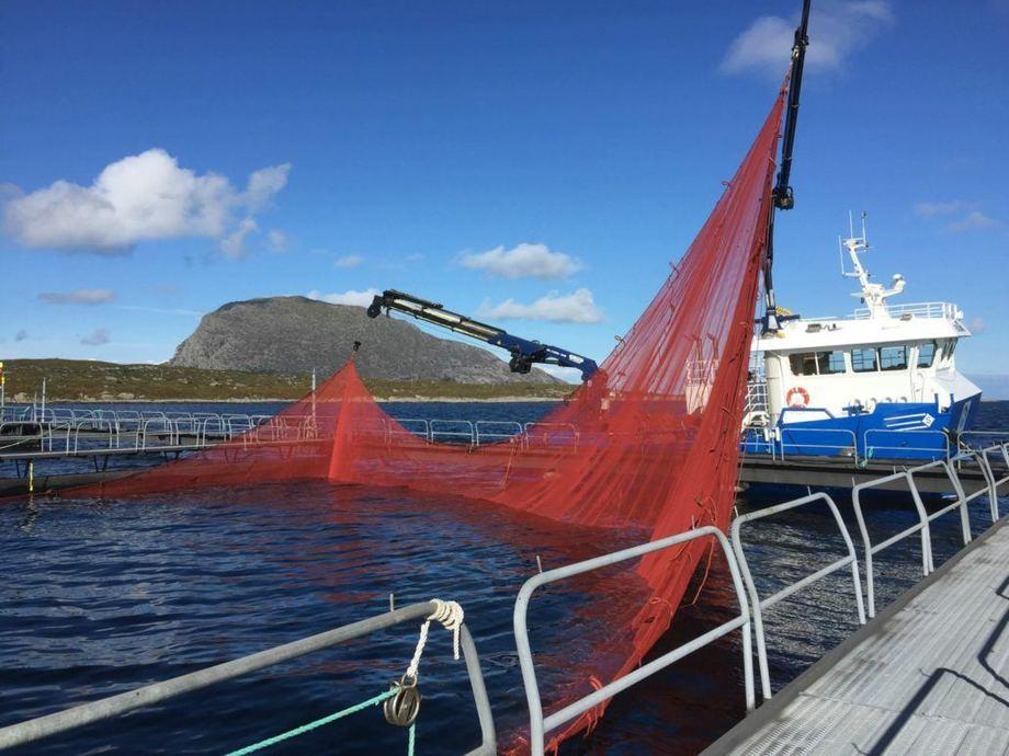 - Selskapet har planer om å produsere 5 800 tonn laks i år, sier daglig leder Nils Tore Karstensen. Foto: E. Karstensen Fiskeoppdrett AS