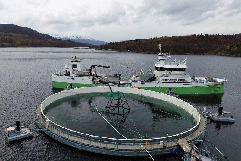 Sistema de jaula Neptun 3, ocupada en un centro de Mowi en Noruega. Foto: Mowi.