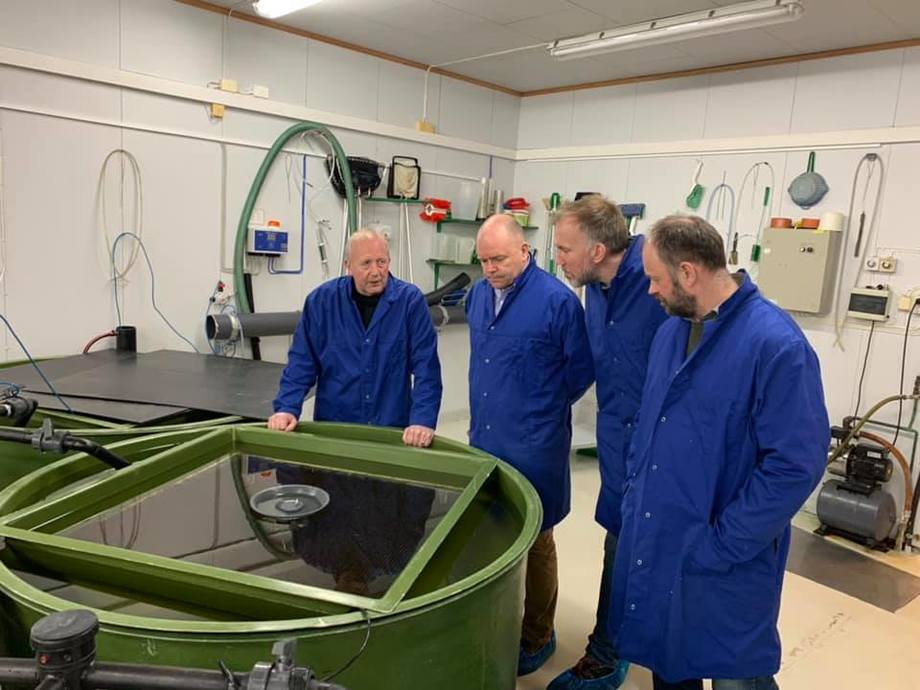Georg Reinaas, Asle Rønning, Lars Jørgen Ulvan og Arnfinn Aunsmo hos Åsen Settefisk. Foto: Måsøval Fiskeoppdrett.