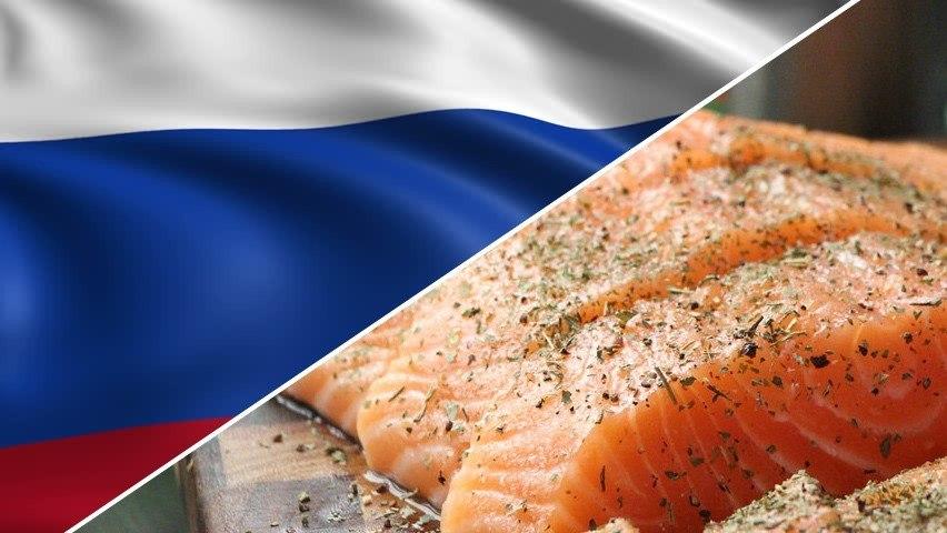 Para el salmón chileno, el mercado ruso experimentó disminuciones de 9,1% en retornos y de 11,1% en las toneladas exportadas. Foto: Archivo Salmonexpert.