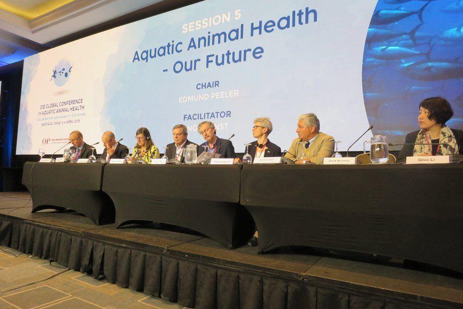 """Panel de discusión """"Colaboración, sostenibilidad, nuestro futuro"""". Foto: Jonathan Garcés, Salmonexpert."""