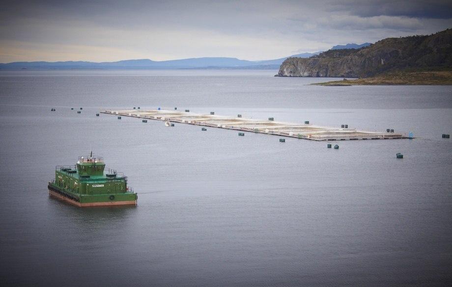 Centro de cultivo de salmón en Magallanes. Foto: Asociación de Salmonicultores de Magallanes.