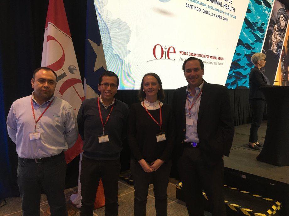 De izquierda a derecha: Cristian Uribe, de Cermaq Chile; Jaime Tobar, de Centrovet; Cristina Winkler de Pincoy; Guillermo Staudt, de Pharmaq. Foto: Pincoy.