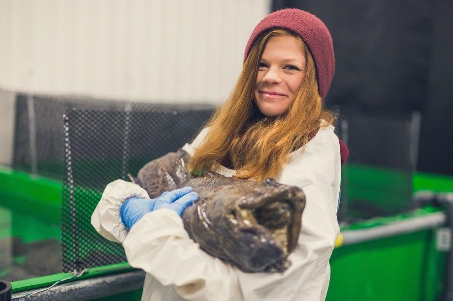Stipendiat Helene Rønquist Knutsen, har studert bruk av mikroalger i for til flekksteinbit. Foto: Frida Bringslimark.