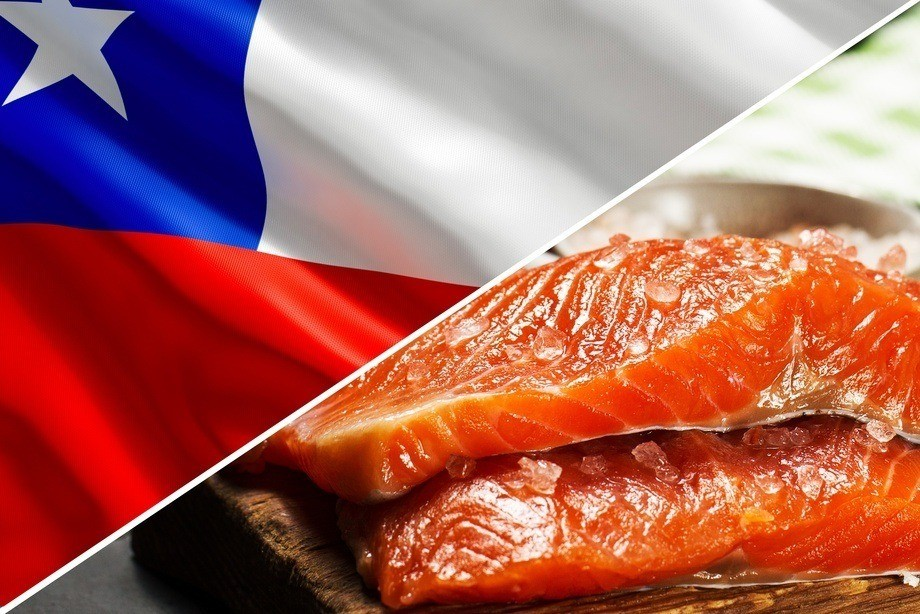 Chilean salmon exports were worth a recorded amount in the first quarter of 2019, due to increased salmon prices.