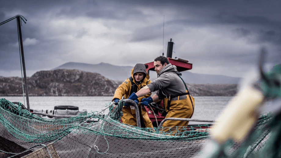 Loch Duart, which exports two-thirds of its fish, was presented as a case study by the FDF. Photo: Loch Duart.