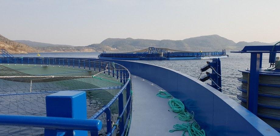 Hele 200 000 fisk skal tirsdag gå ut i «Aquatraz 2» (lengst unna). Nærmest kamera er «Aquatraz 1» som det har vært produsert fisk i siden oktober 2018.  Foto: Midt-Norsk Havbruk