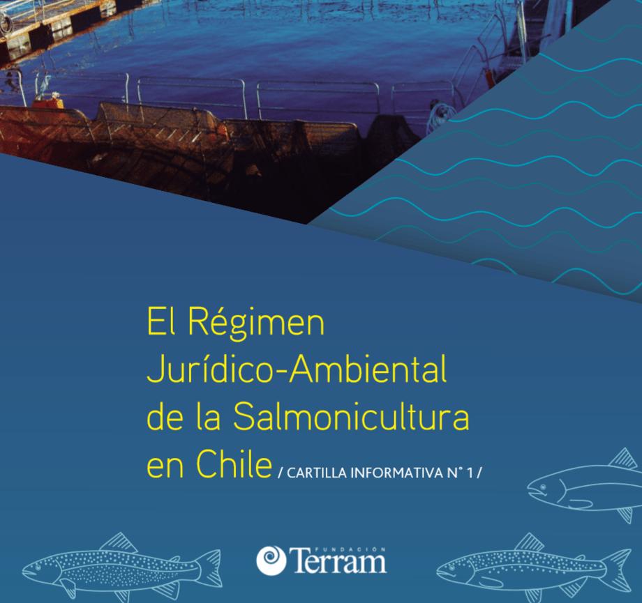"""Cartilla informativa titulada """"El régimen jurídico-ambiental de la salmonicultura en Chile"""". Foto: Fundación Terram."""
