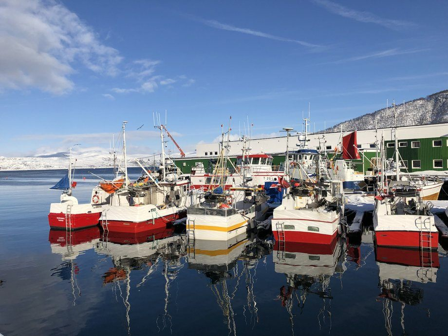Hybrid-båten Senjahav er omringet av vanlige fiskebåter i sin hjemmehavn i Botnhamn. Foto: Akva Group.