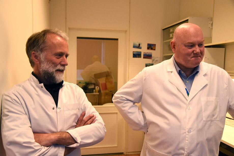 Avdelingsdirektør Edgar Brun og seksjonsleder Geir Bornø på laboratoriet i Harstad. Foto: Asle Haukaas / Veterinærinstituttet