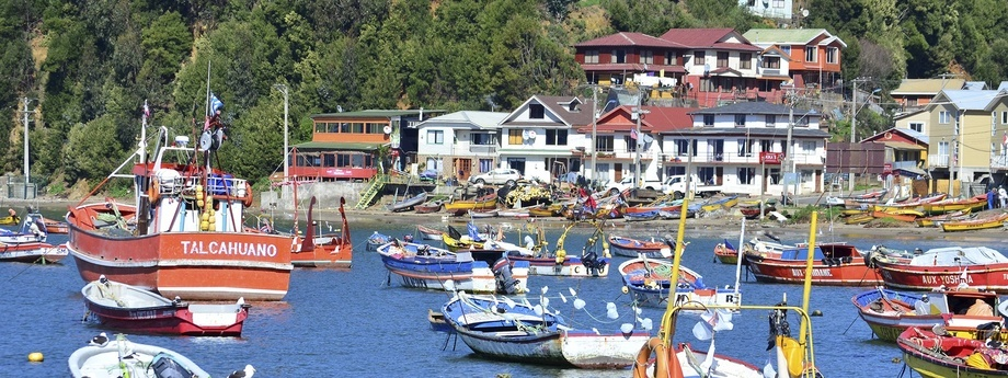 Caleta Tumbes. Foto: Municipalidad de Talcahuano.