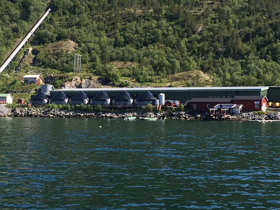 Grytåga Settefisk sitt anlegg ved Mosjøen, ligger flott til ved sjøen. Foto: Grytåga settefisk.