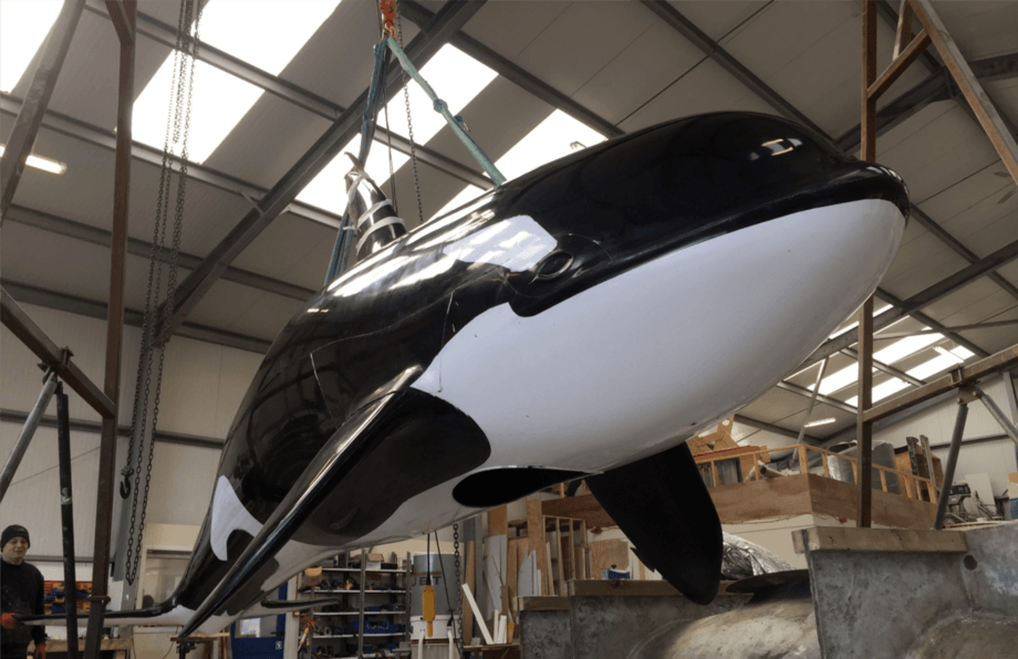 Faking it: Mowi hopes the Shetland-built whale will act as a scarecrow of the seas to keep seals away from salmon cages. Photo: Mowi.