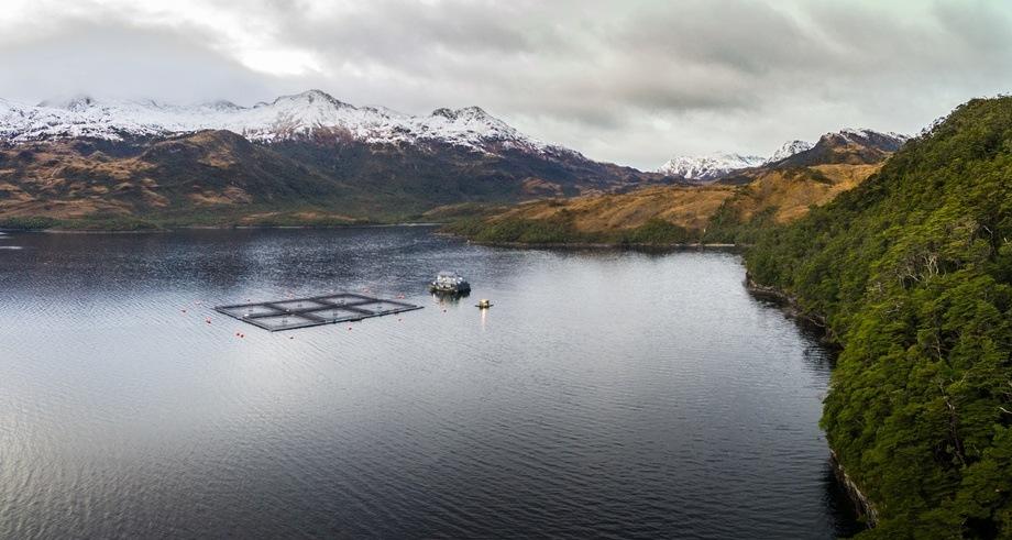 Foto referencial de actividad salmonicultora en Magallanes. Foto: Asociación de Salmonicultores de Magallanes.