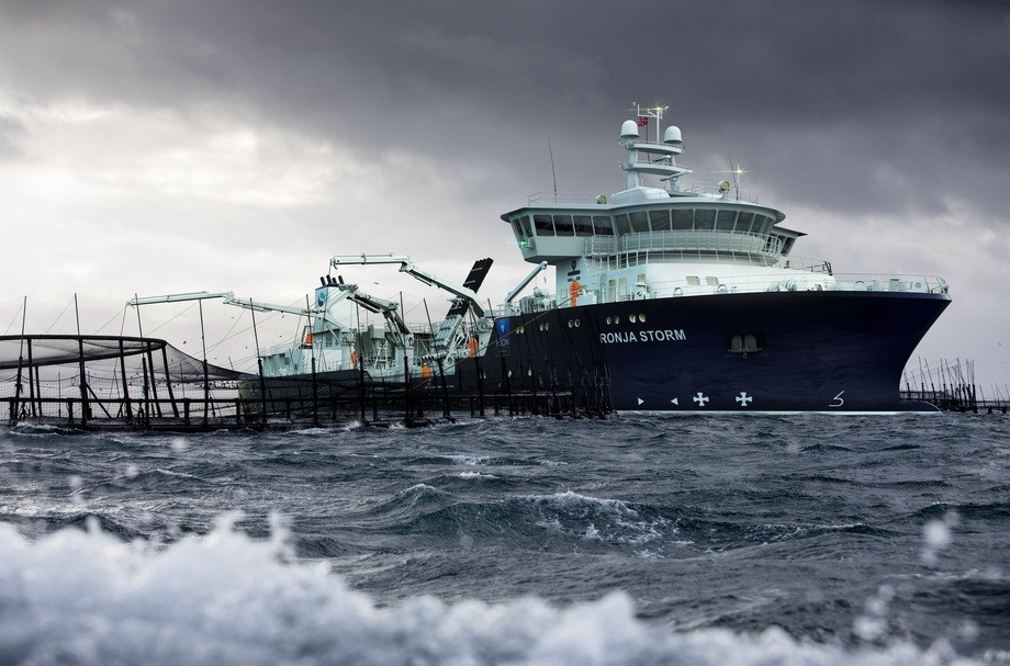 The world's largest wellboat, the Ronja Storm, will go for the Tasmanian aquaculture company Huon Aquaculture Group. The picture of the cages is real and taken from the relevant sites in Storm Bay, where the boat will operate. The boat is drawn in. Photomontage: Havyard.