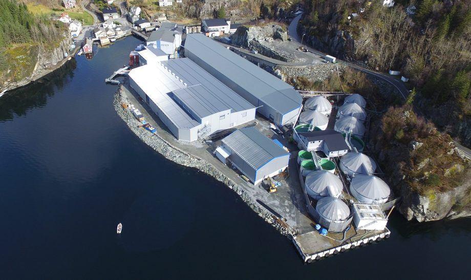 Oversiktsbilde av Sævareid Fiskeanlegg. På dette anlegget fikk de på plass en ny RAS-hall i 2017. Foto: Knut Revne.