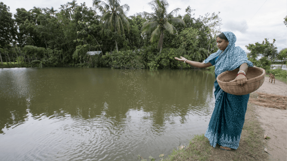 A woman feeding fish at a pond in Bangladesh, one of the countries WorldFish works in to promote aquaculture. Photo: Yousuf Tushar / WorldFish.