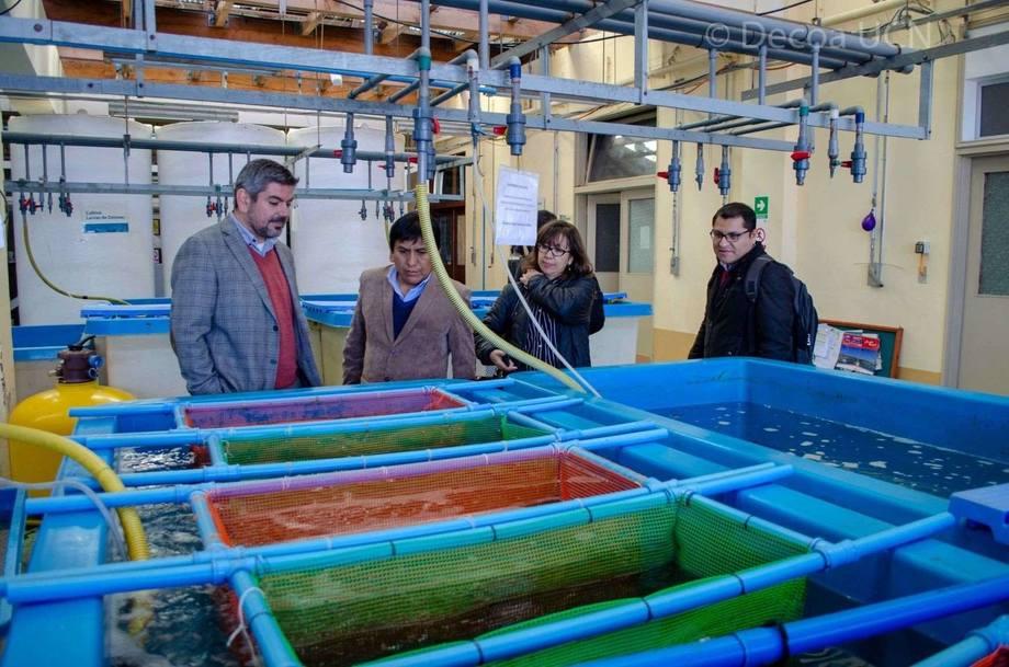 La delegación peruana estuvo integrada por representantes de Fondepes y de Produce-Dirección General de Acuicultura (DGA) /Dirección de Promoción y Desarrollo Acuícola (DPDA). Foto: AquaPacífico.