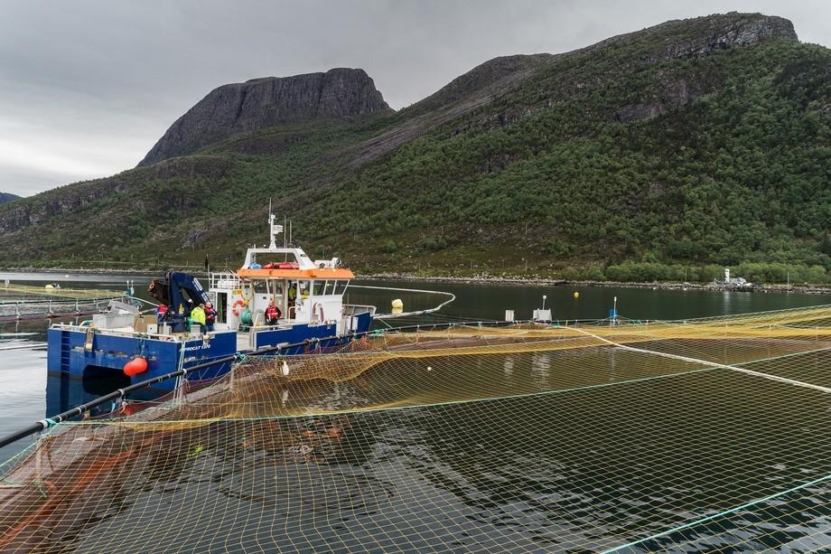 Resultatene fra testingen på Mowi sitt oppdrettsanlegg på Gulestø viser ifølge de involverte at systemet stabiliserer oksygenkonsentrasjonen i merdene. Foto: Runar Hagen.