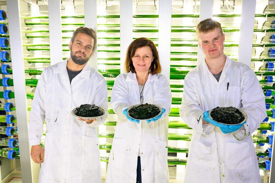 Fra venstre: Ruben Langlo i Vital Seafood, Kari Skjånes i NIBIO og Alf Erik Gjørven i Folvengaard AS (Foto: Erling Fløistad, NIBIO)