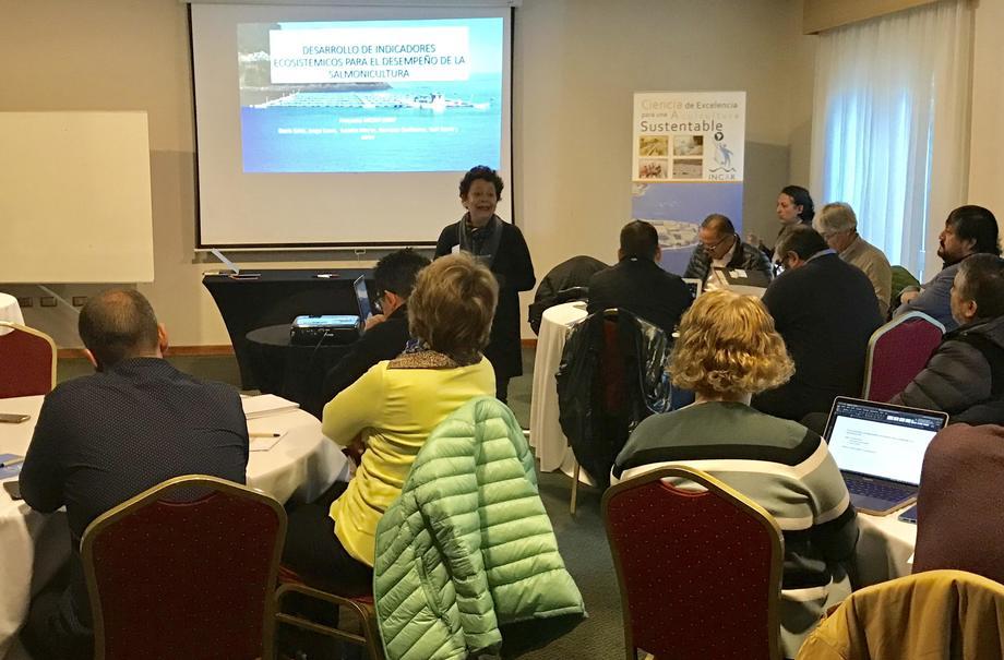 """""""Desarrollo de indicadores ecosistémicos para el desempeño de la salmonicultura a nivel de paisaje"""" se denominó el taller. Foto: Incar."""