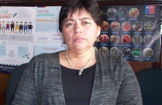 Zoila Bustamante, vicepresidenta de Conapach. Foto: Conapach.