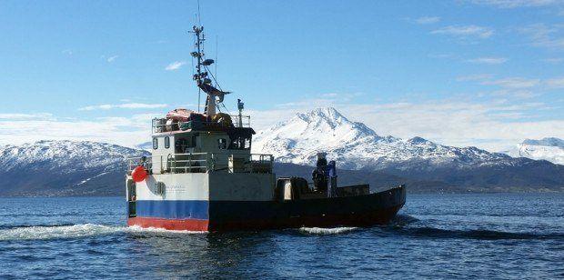 La empresa afectada se especializa en servicios de amarres y transporte, entre otros. Foto: Midt Norsk Kystservice.