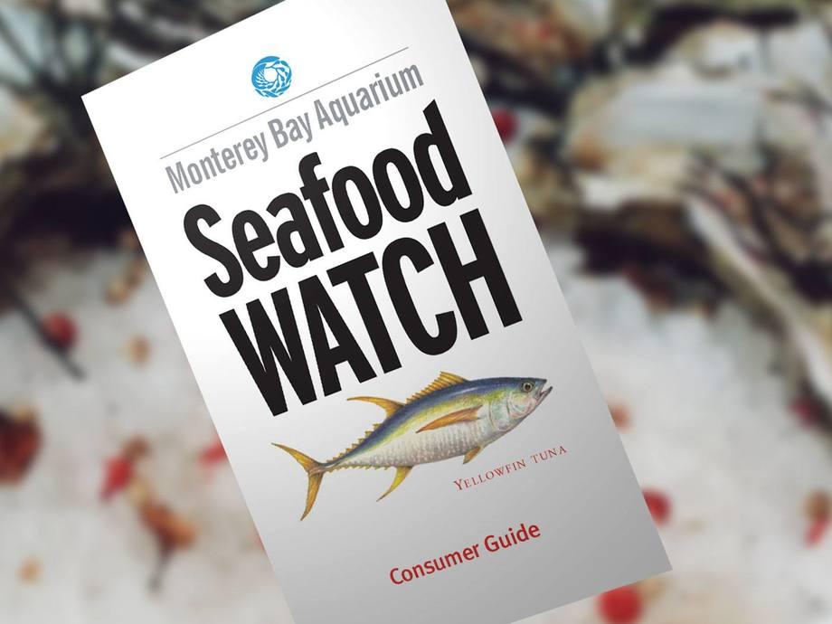 El programa Monterey Bay Aquarium Seafood Watch® ayuda a los consumidores y a las empresas a elegir productos del mar sustentables. Foto: Monterey Bay Aquarium Seafood Watch®.