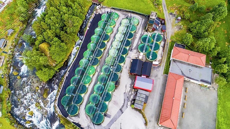 La acuicultura en tierra seguirá creciendo y en Aqua Nor participarán numerosas empresas que abordan este mercado. Foto: Aqua Nor.