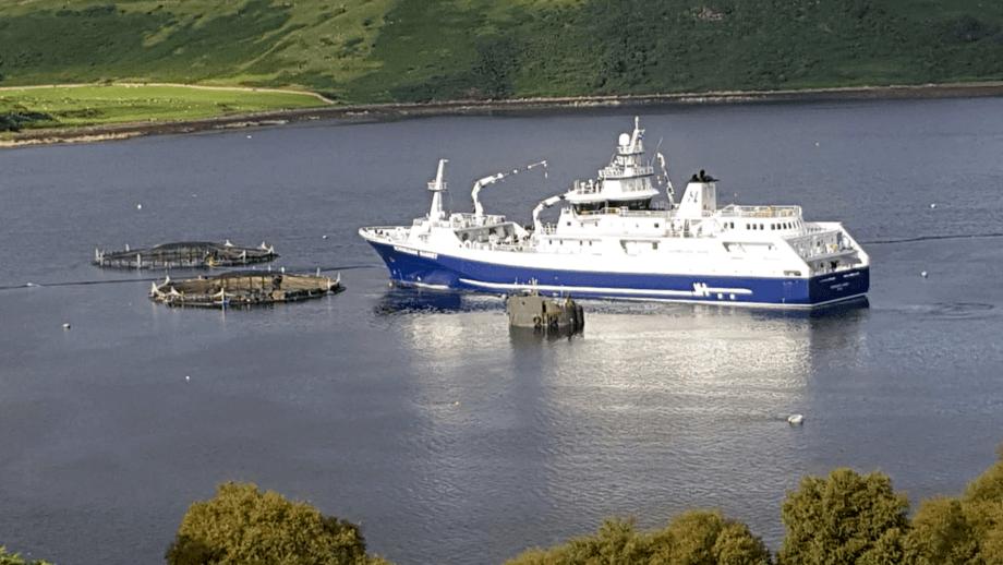 Barco de procesamiento Norwegian Gannet, de Hav Line, retirando salmones desde centro de Mowi Escocia. Foto: Mowi.