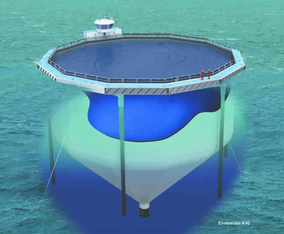 Selskpet mener at det potensielt kan produseres en million ett kilos smolt to ganger i året i hver Ecomerd. Foto: Ecomerden AS.
