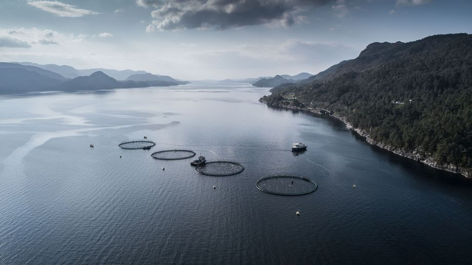 The Loddetå site in southern Norway is the world's first marine salmon farm where all daily operations are powered by an on-shore electricity supply. Photo: Bremnes Seashore