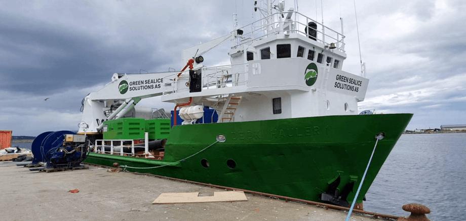 Avlusningsfartøyet er 42 meter lang og skal etter planen operere i det norske og skotske lakseoppdrettsmarkedet med oppstart for en av Norges største oppdrettere i midten av august. Foto: Green Sealice Solutions AS.