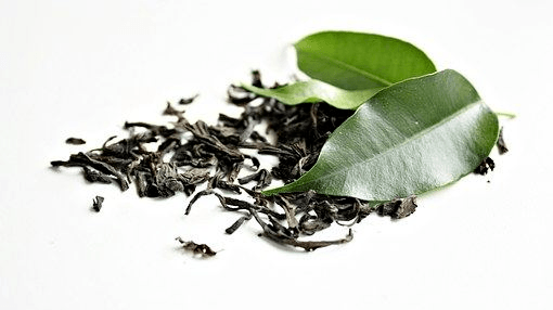 The addition of green tea to a food wrap increased salmon shelf-life, scientists in Portugal concluded. Photo: Pixabay.