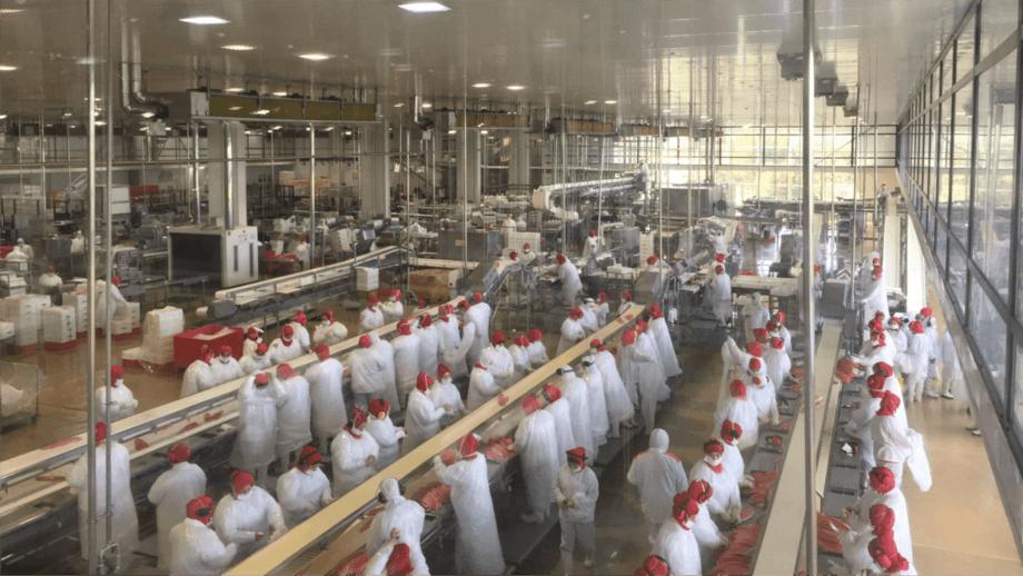 La planta de procesamiento expandida de AquaChile emplea a 1.000 personas. Foto: AquaChile.