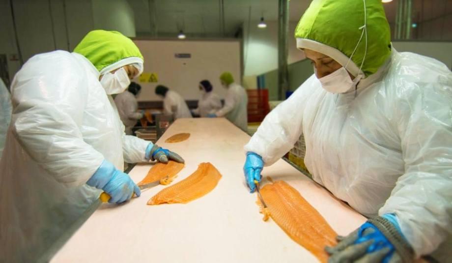 Trabajadoras de la planta de procesos de Yadran. Foto: Yadran.