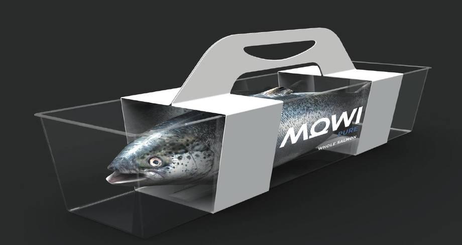 På onsdag får vi vite hvor mye fisk MOWI tror de vil slakte neste år. Nordea tror på 5 % opp fra i år. Illustrasjon: MOWI.