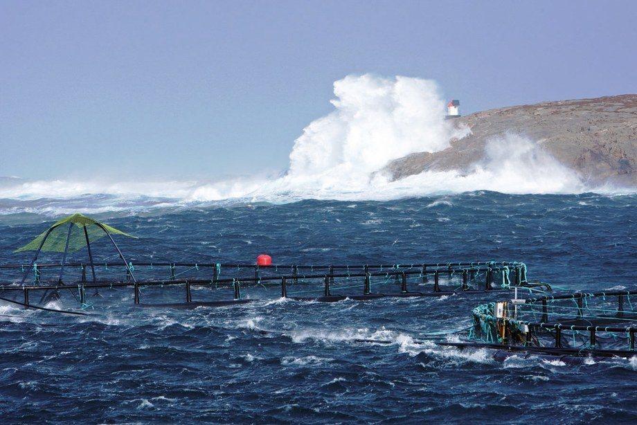 Det er ingen hemmelighet at en eksponert lokalitet kan by på stor risiko. Men oppsiden er lavere miljøpåvirkning og bedre fiskevelferd, som igjen gir bedre produktivitet og biologi. Dette forutsetter at du har utstyr som tåler de tøffe forholdene.