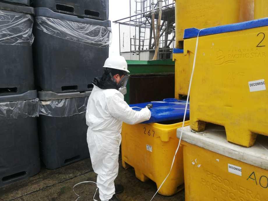 Las empresas productoras de salmón recalcan la necesidad acceder a las plantas de proceso y a los acopios cuanto antes. Foto: Coordinadora Nacional de la Industria Salmonera y ramas afines.