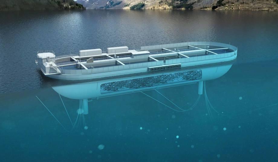 Si todo sale según lo planeado, el 2022 el concepto recibiría peces para comenzar a funcionar. Foto: Nail/Stadium Laks.