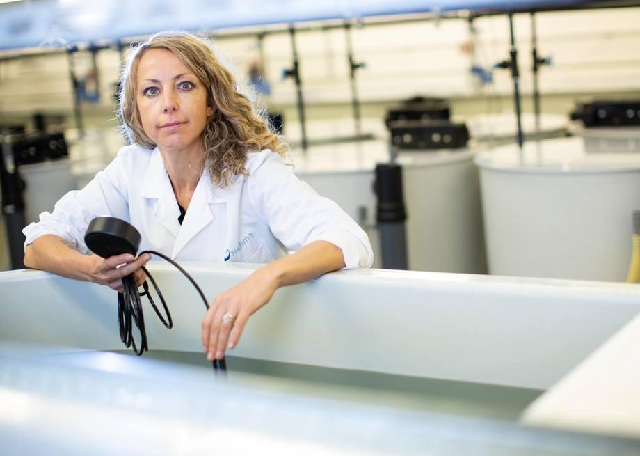Elisabeth Ytteborg está investigando cómo los aumentos de temperatura afectarán el cultivo de salmón noruego. Ella cree que los indicadores son preocupantes y que se necesita mayor investigación. Foto: Joe Urrutia/Nofima.