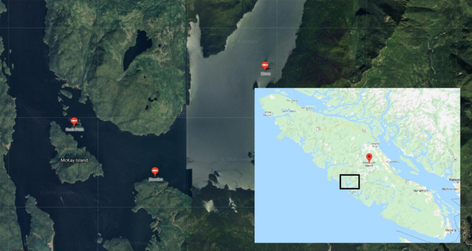 The three Cermaq sites affected by the algal bloom. Map: Google /Cermaq.