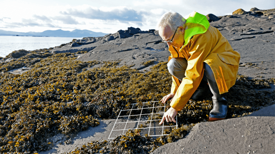 Professor Michael Burrows led research that showed warm-water species have increased off northern Europe's coastlines. Photo: SAMS.