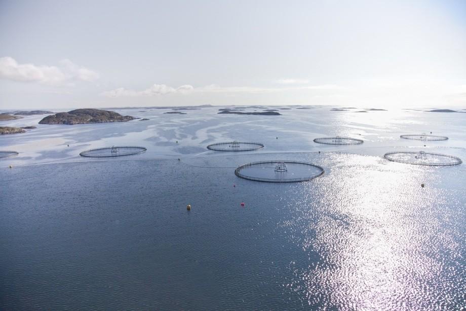 Det nye forslaget vil gjøre prosessen enklere, mer effektiv og enhetlig, samtidig som miljøet blir ivaretatt på en god måte. Foto: Erik Røed