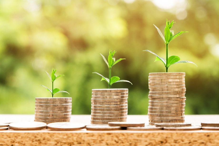 Forfatterne av kronikken mener at oppdrettsnæringen bør dekke miljøkostander gjennom miljøskatt og -avgifter. Foto: Nattanan Kanchanaprat / pixabay.com