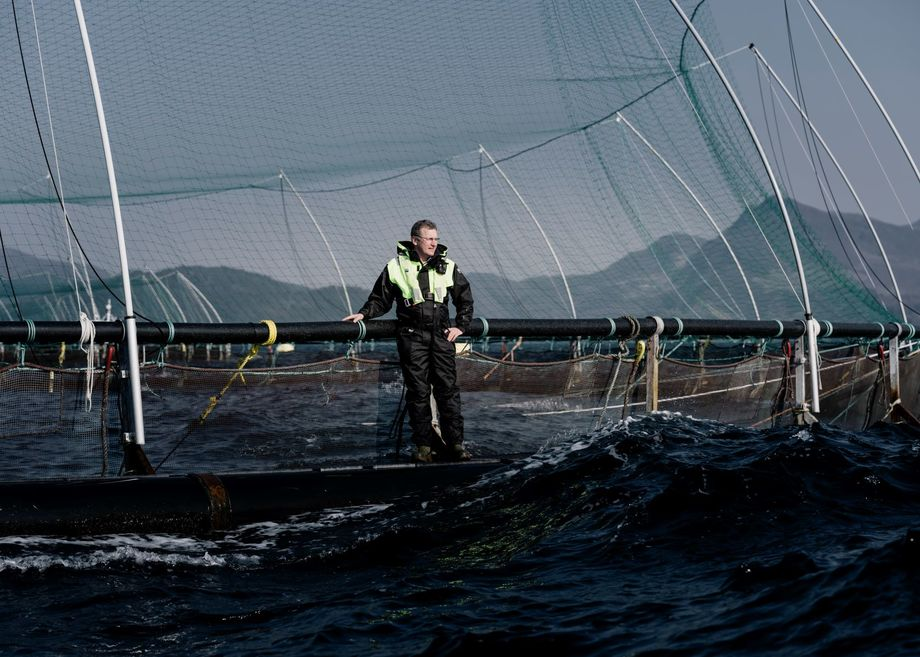 Grieg Seafood oppfordrer norske og internasjonale selskaper til å delta i dugnaden for å stoppe avskogingen i Brasilianske Cerradoen Foto: Tommy Ellingsen